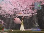 桜の花びらが降る中で